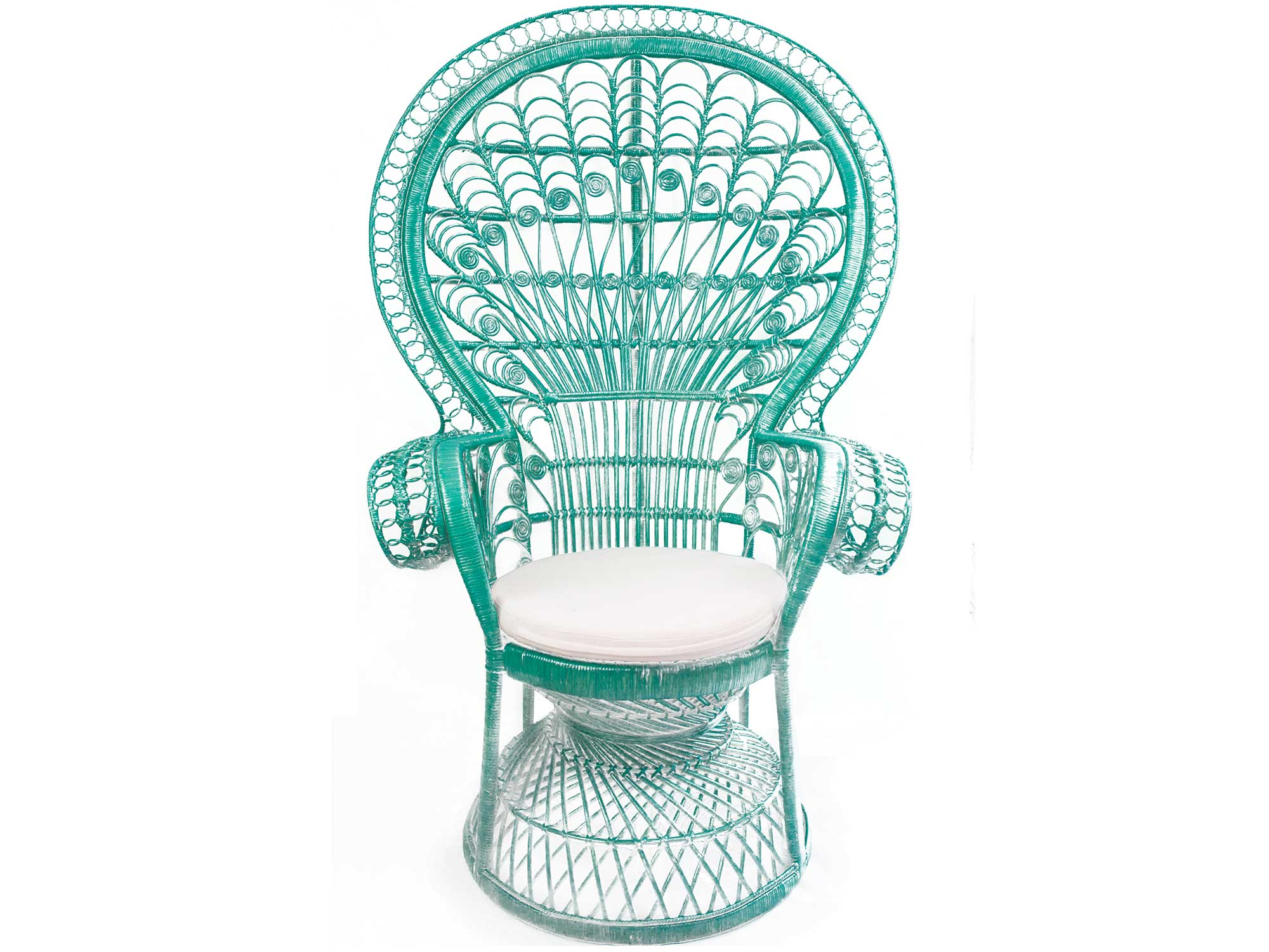 Teal Peacock Chair